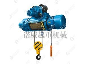 Electric ring chain hoist